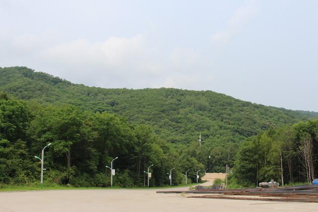 岭东区青山国家森林公园