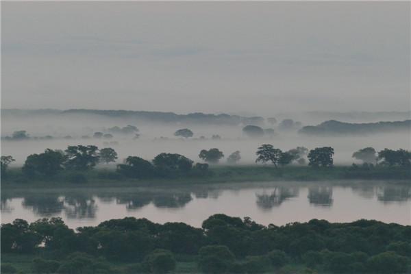 摄影:曹晓枫  作品名:《晨醒》                   拍摄地点:双鸭山市饶河南湖湿地