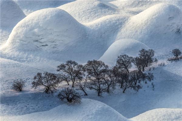 摄影:常志英  作品名:《冬韵》                   拍摄地点:双鸭山市饶河小南山