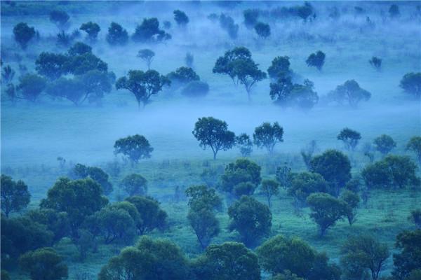摄影:陈宝林  作品名:《半梦半醒界江如画》       拍摄地点:双鸭山市饶河南湖湿地
