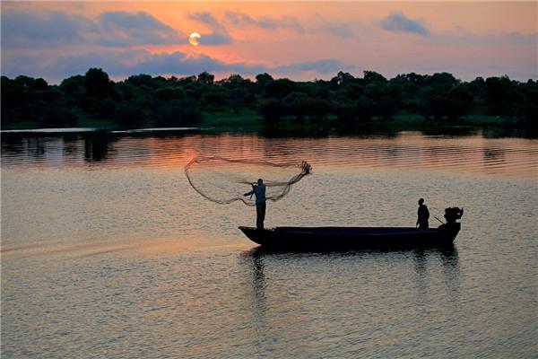 摄影:胡  晶  作品名:《湿地晨曲》               拍摄地点:双鸭山市饶河南湖湿地