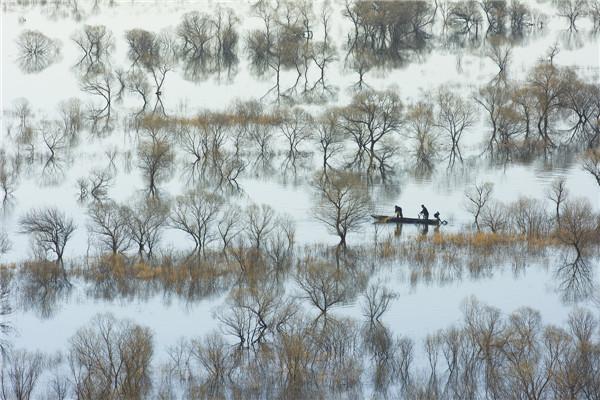 摄影:冷菊珍  作品名:《乌苏晨曲》               拍摄地点:双鸭山市饶河北大桥