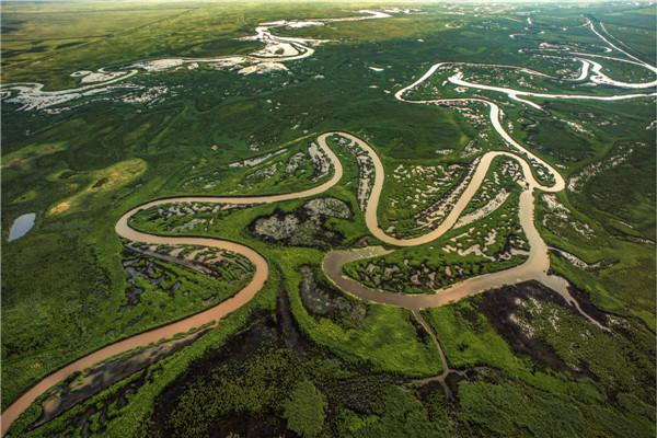 摄影:李秀顶  作品名:《湿地游龙》               拍摄地点:双鸭山市挠力河湿地