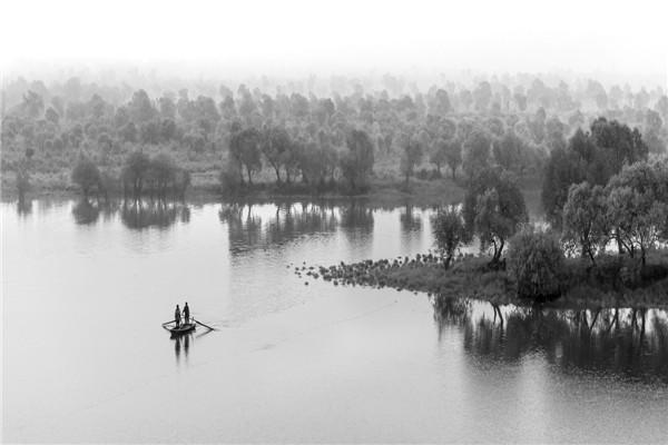 摄影:李秀顶  作品名:《梦幻南湖》               拍摄地点:双鸭山市饶河南湖湿地