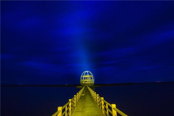 摄影:刘为强  作品名:《金蛋》                   拍摄地点:双鸭山市千鸟湖湿地