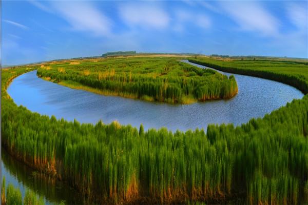 摄影:索久林  作品名:《千鸟湖之梦》             拍摄地点:双鸭山市千鸟湖湿地