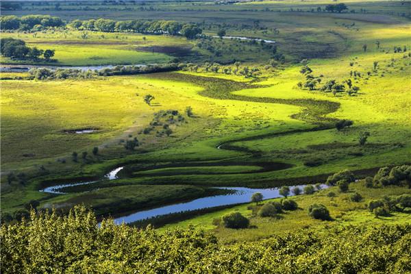 摄影:王  芳  作品名:《湿地之秋》               拍摄地点:双鸭山市小木河湿地