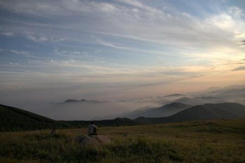 岭东区羊鼻山森林公园