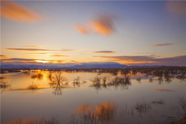 摄影:王俊平  作品名:《湿地晨曦》               拍摄地点:双鸭山市饶河北大桥
