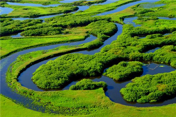 摄影:王亚光  作品名:《鸟瞰挠力河》             拍摄地点:双鸭山市挠力河湿地