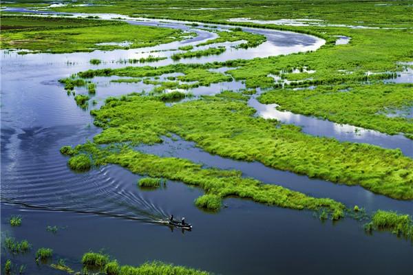 摄影:王雁琪  作品名:《湿地之美 独在于水 》     拍摄地点:双鸭山市雁窝岛湿地