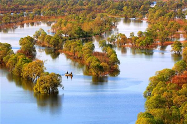 摄影:魏秀杰  作品名:《湿地晨曲》               拍摄地点:双鸭山市饶河南湖湿地