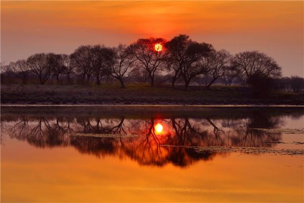 摄影:徐  义  作品名:《湿地暮色》              拍摄地点:双鸭山市饶河南湖湿地