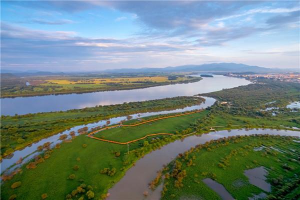 摄影:杨柏林  作品名:《无题》                  拍摄地点:双鸭山七星河湿地