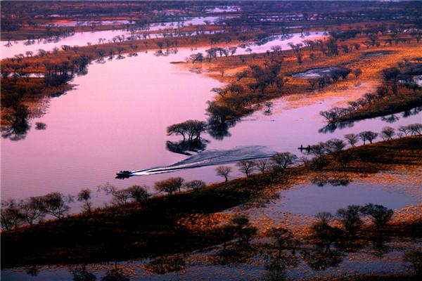 摄影:于国军  作品名:《南湖湿地》              拍摄地点:双鸭山市饶河南湖湿地