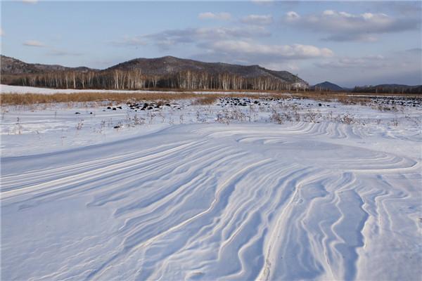 摄影:张金义  作品名:《风过留痕》              拍摄地点:双鸭山市饶河