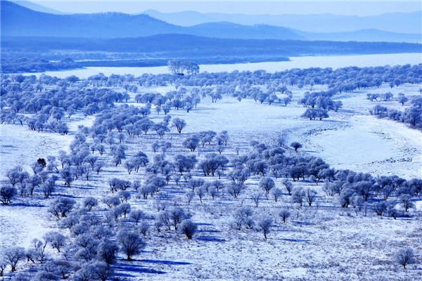 摄影:张仁才  作品名:《冬之韵》                拍摄地点:双鸭山市饶河小南山