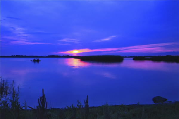 摄影:陈日波  作品名:《湿地》                  拍时地点:双鸭山市七星河湿地