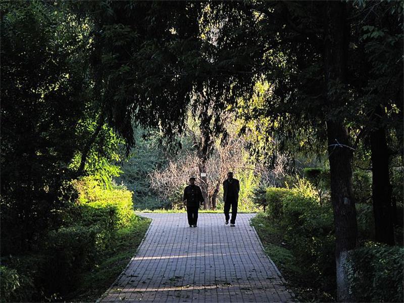 尖山区北秀公园